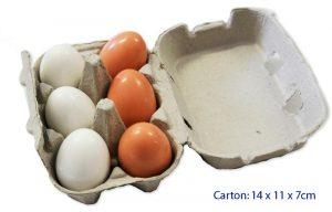 Fun Factory Wooden Eggs in Egg Carton 6pc
