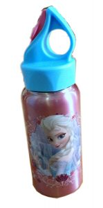 Disney Frozen Elsa & Anna Stainless Steel Drink Bottle